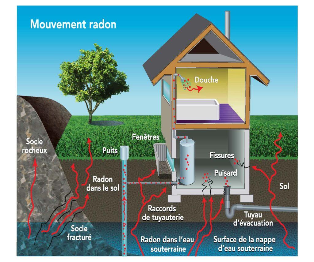 Radon - français