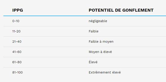 Pyrite - tableau IPPG français